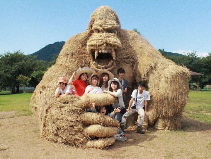 Потрясающие скульптуры из соломы от японских студентов (12)
