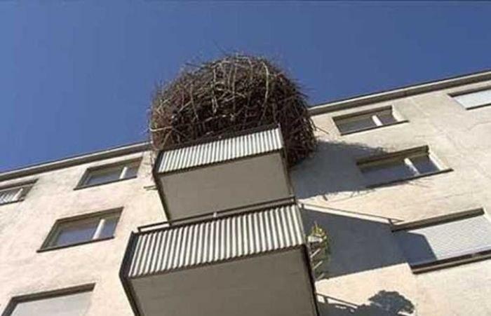 Балкон в России как объект для творчества и креативных идей (16)