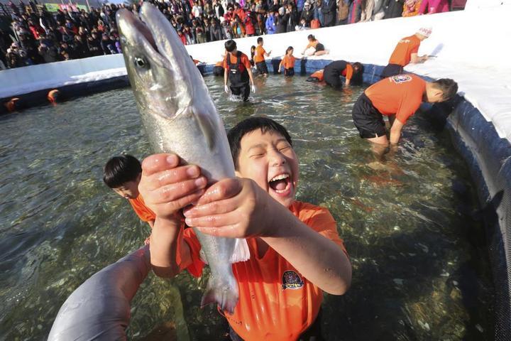 Соревнования по ловле форели в Южной Корее (8)