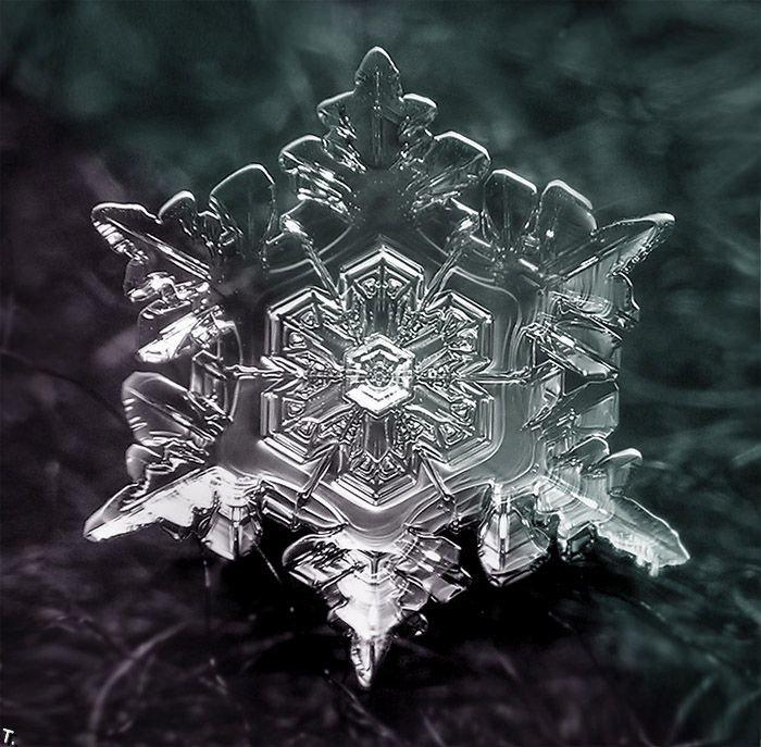 бывает, картинки кристалликов воды мода изменчива непредсказуема