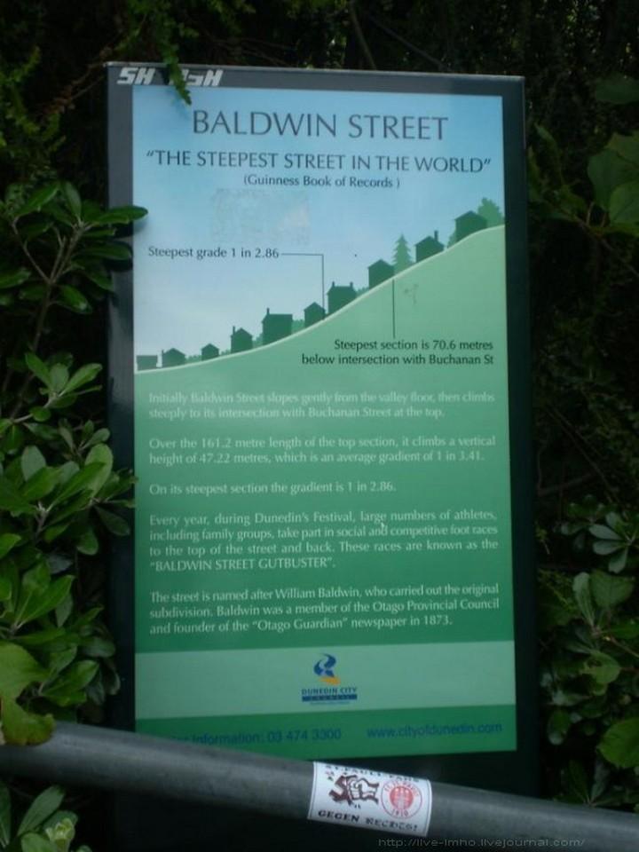 самая крутая улица занесенная в Книгу рекордов Гиннеса, улица на крутом склоне. Самая крутая улица Baldwin Street в Новой Зеландии (4)