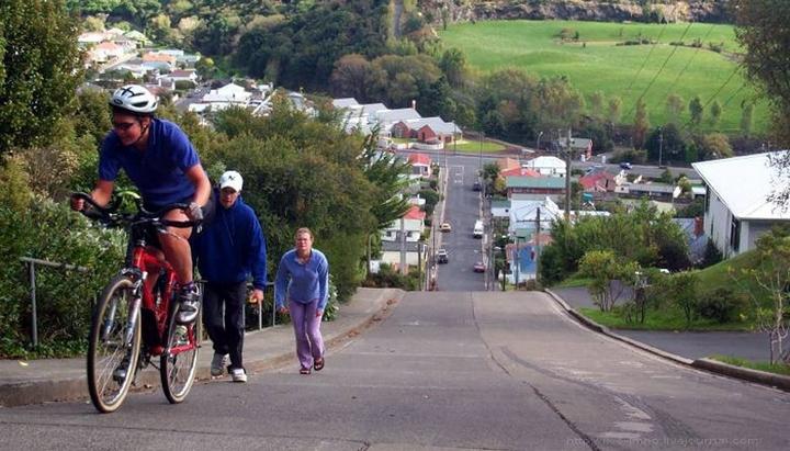 самая крутая улица занесенная в Книгу рекордов Гиннеса, улица на крутом склоне. Самая крутая улица Baldwin Street в Новой Зеландии (5)