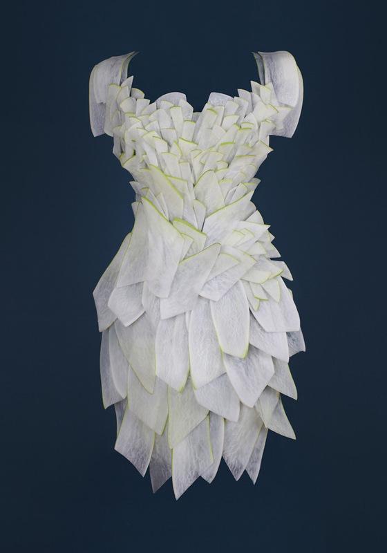 Платья из еды, необычные платья (8)