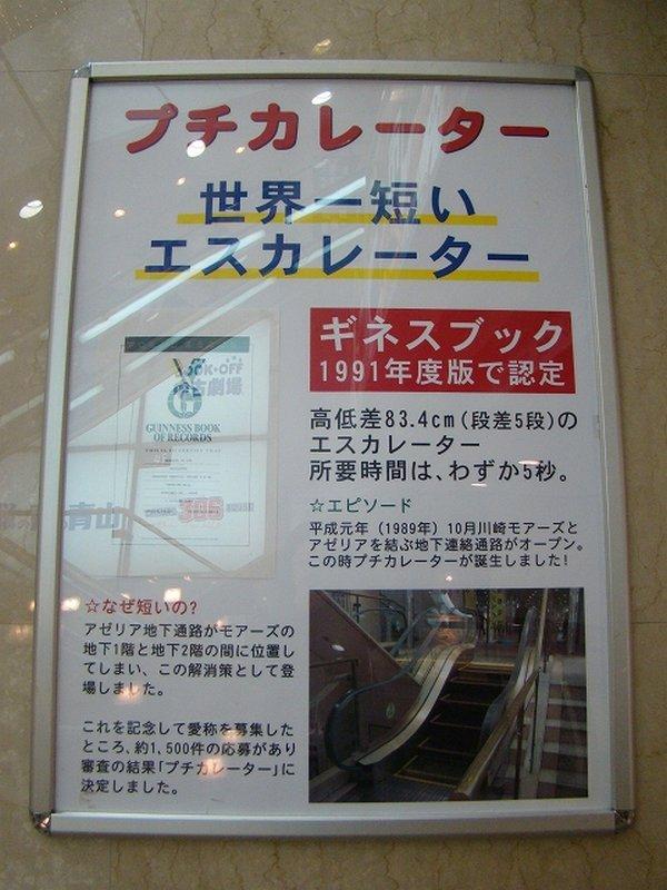 Самый короткий эскалатор в мире (2)