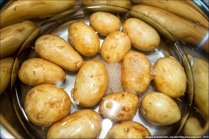 Три небанальных блюда из молодого картофеля (18)