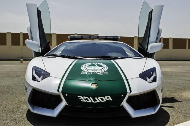 Раскошные полицейские машины в Дубаи (11)