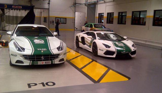 Раскошные полицейские машины в Дубаи (13)