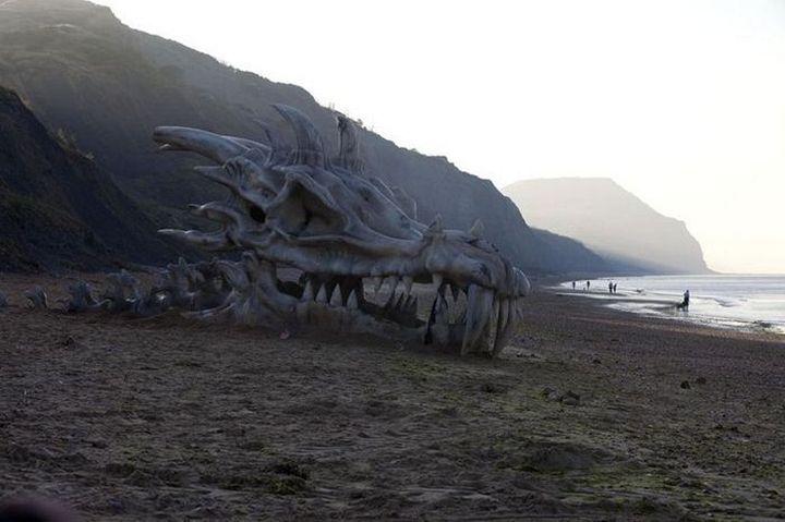 Череп дракона на пляже в Великобритании (3)