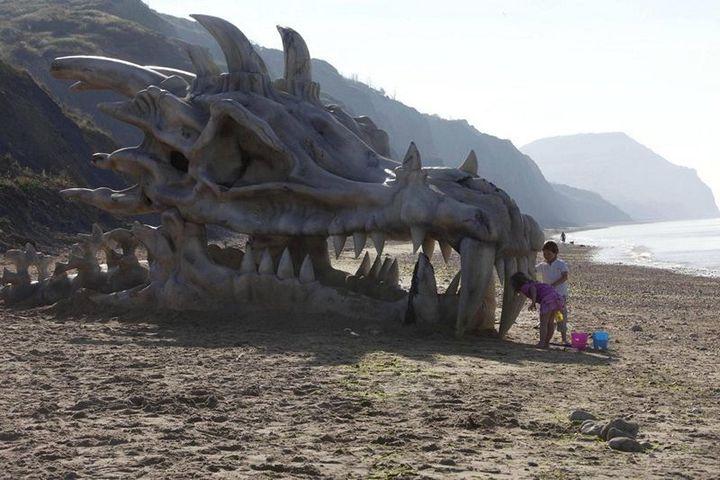 Череп дракона на пляже в Великобритании (2)
