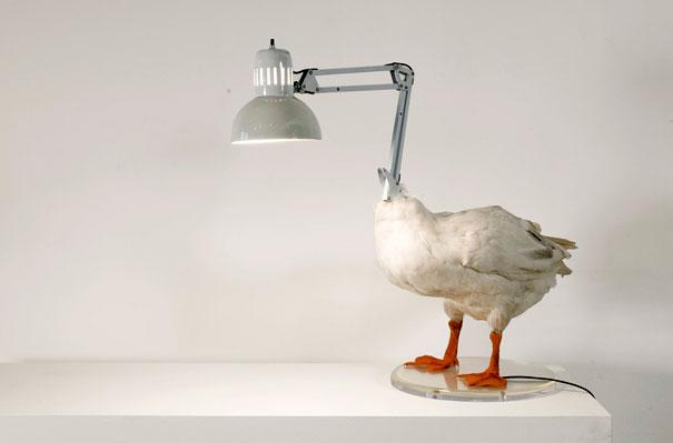 Самые необычные и стильные светильники и люстры (5)
