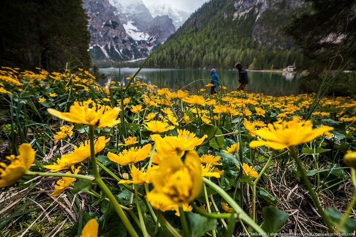 Озеро Брайес (Lago di Braies) в Италии (2)