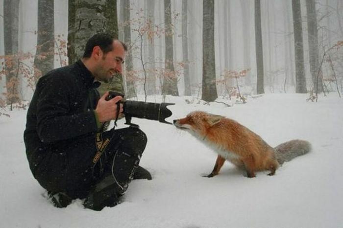 профессиональные фотографы (15)