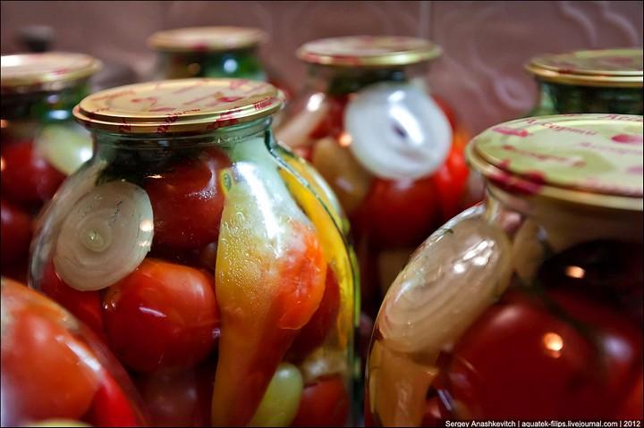 Как засолить помидоры, пошаговая инструкция с фото (17)