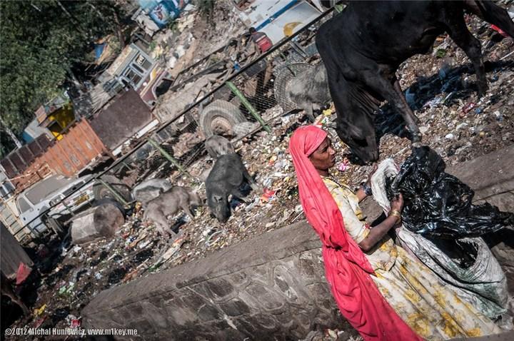 Шок, восторг и паника! — это Индия, детка. Фото Индии (28)