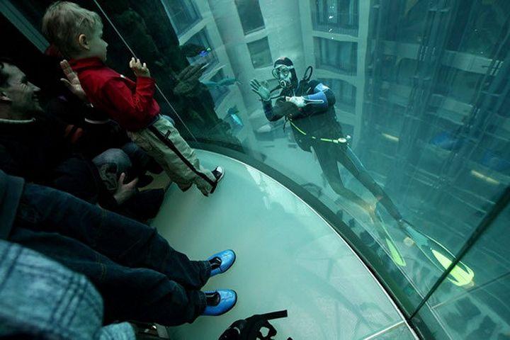 """Самый большой аквариум в отеле """"Radisson Blu"""", Германия (3)"""