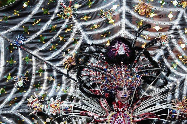 Необычный карнавал в индонезийском Джембере (9)