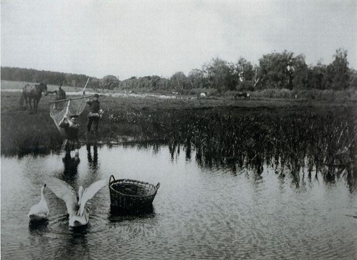 Чем занимались крестьяне начала прошлого столетия, какую работу они выполняли (37)