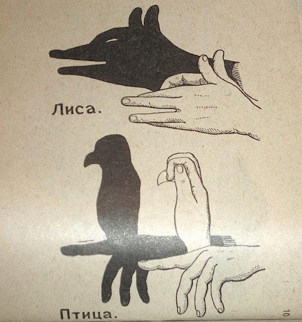 Как сделать тени животных на стене (9)