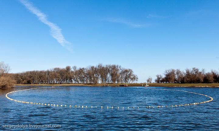 Как ловят рыбу в Астрахани (2)
