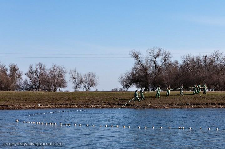 Как ловят рыбу в Астрахани (3)