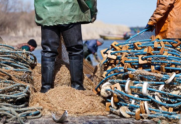 Как ловят рыбу в Астрахани (9)