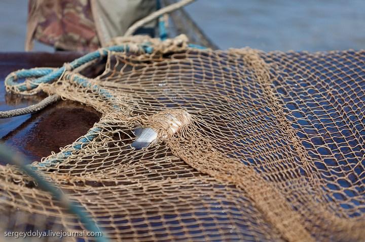 Как ловят рыбу в Астрахани (10)