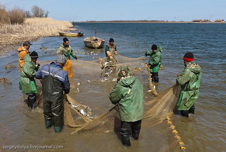 Как ловят рыбу в Астрахани (16)