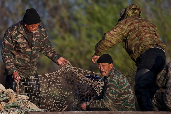 Как ловят рыбу в Астрахани (20)