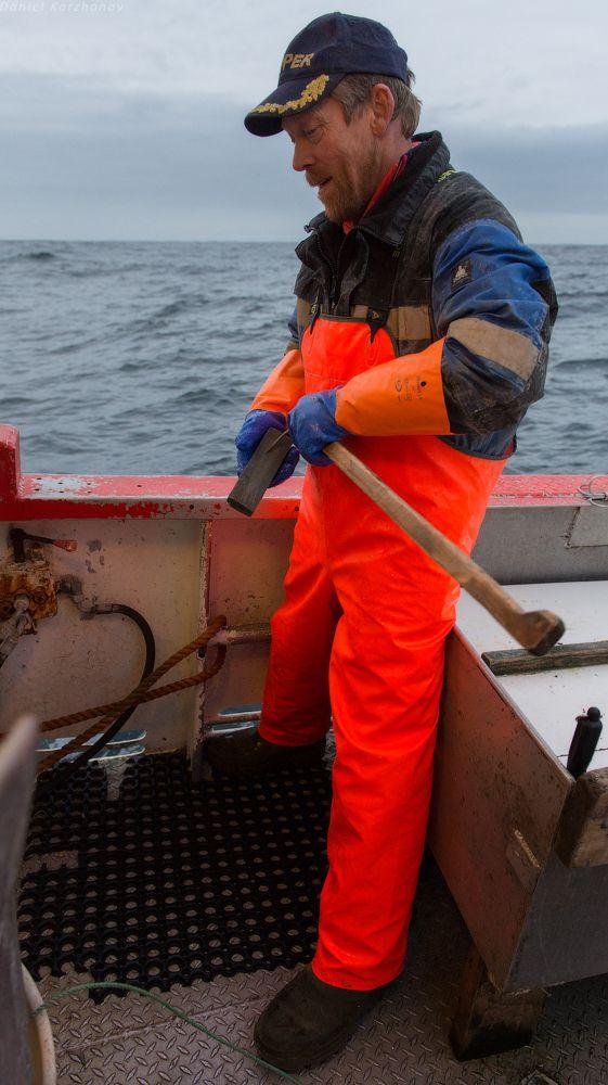 Как ловят треску в Норвегии (13)