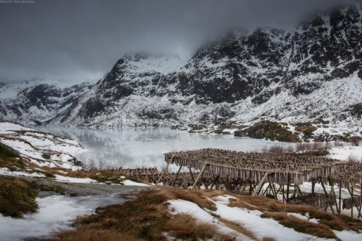 Как ловят треску в Норвегии (25)