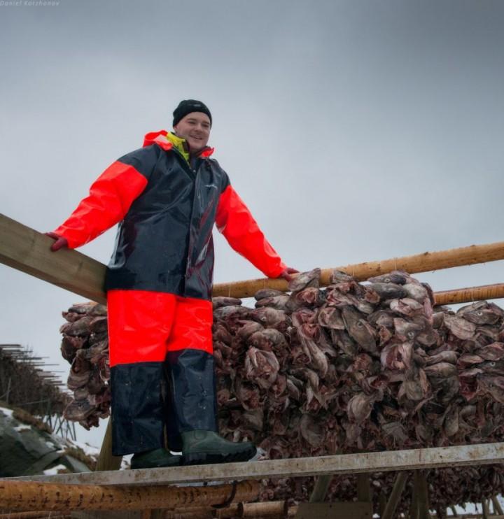 Как ловят треску в Норвегии (29)