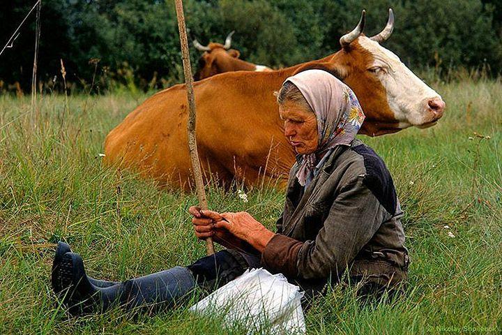 Как живут люди в глухой деревне (7)
