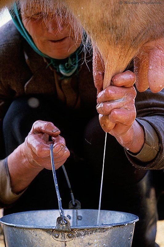 Как живут люди в глухой деревне (11)