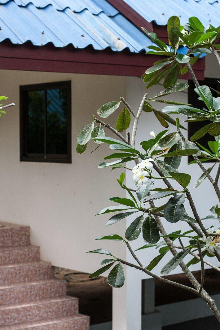 Как перезимовать с семьей в Таиланде (5)