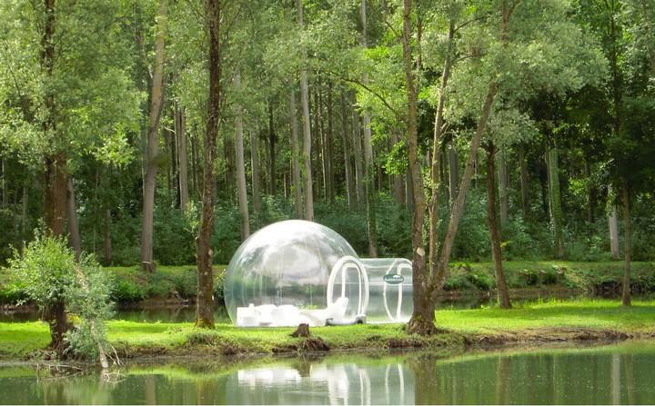 Прозрачный, надувной дом Bubble Tree (2)