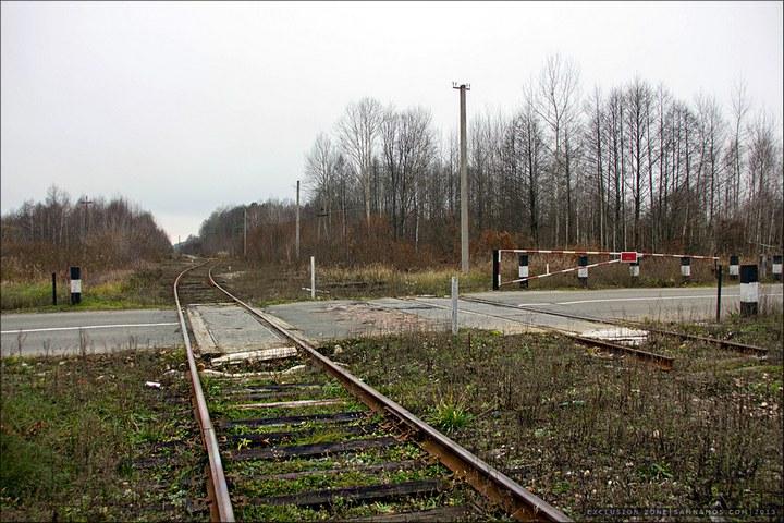 Нелегальный поход в Припять, как своими силами добраться до Припяти (6)