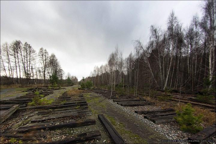 Нелегальный поход в Припять, как своими силами добраться до Припяти (27)