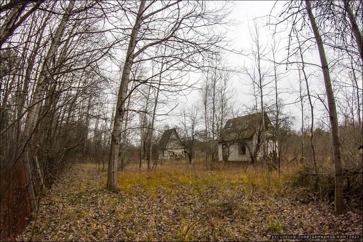 Нелегальный поход в Припять, как своими силами добраться до Припяти (50)