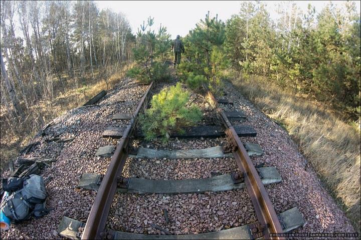Нелегальный поход в Припять, как своими силами добраться до Припяти (52)