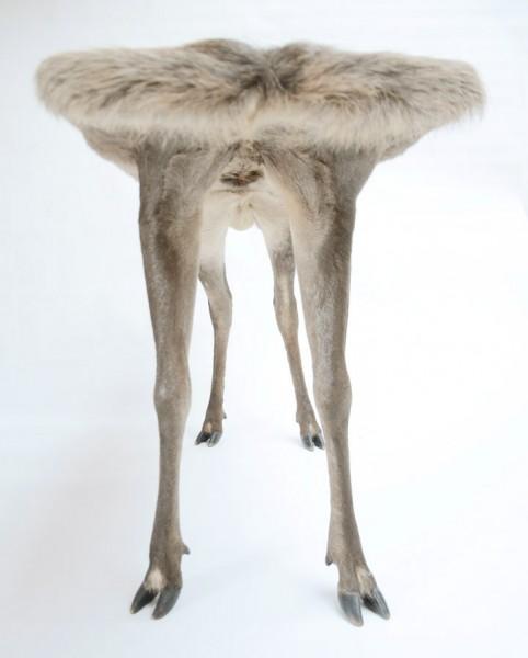 Необычные столики в виде животных (3)