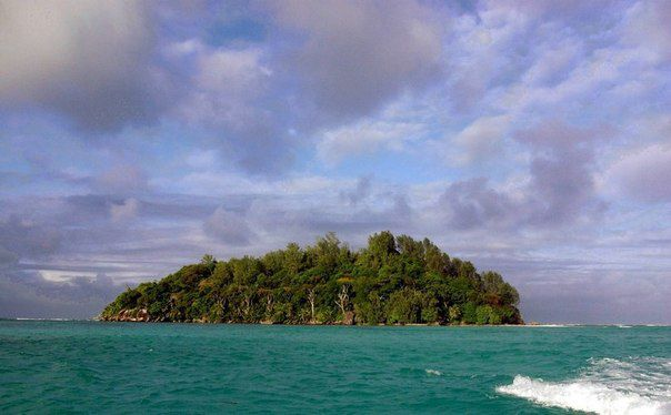 Собственный остров за 13 тысяч долларов (6)