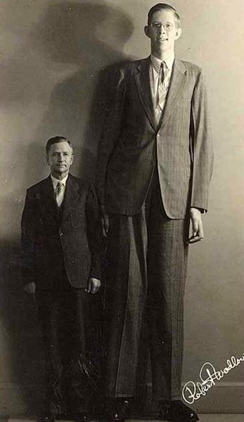 Роберт Першинг Уодлоу — самый высокий человек в мировой истории (2)