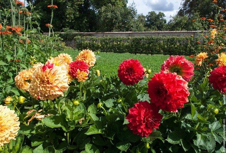 Сен-Жан — сад-огород в окрестностях Парижа (6)