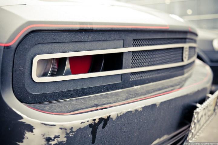 Dodge Challenger с креативной раскраской (6)