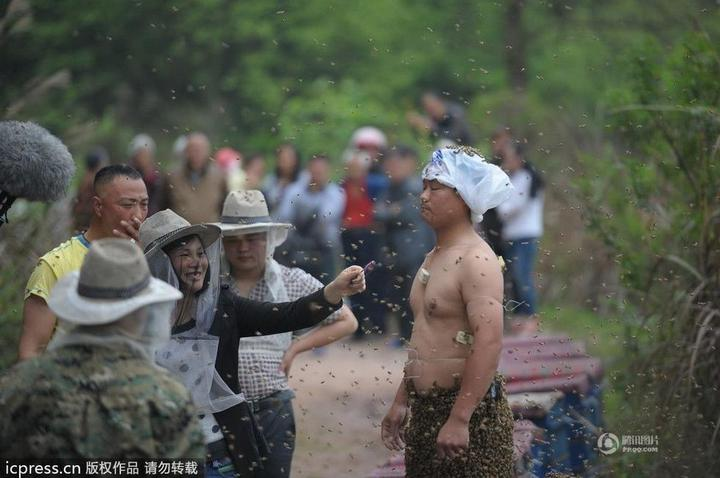 Китайца облепили 460 000 пчел (6)