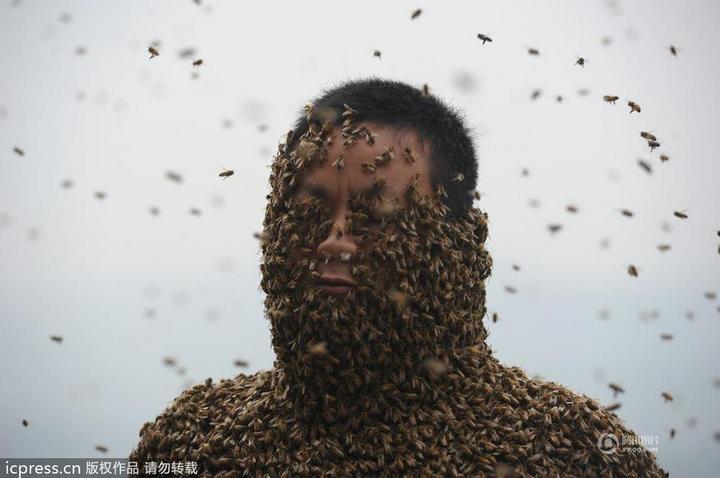 Китайца облепили 460 000 пчел (7)