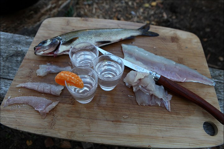 Отличная рыбалка с душевными фотографиями (19)