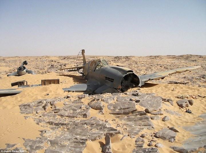 Cамолет времен Второй мировой Curtiss P-40D(E) Kittyhawk пролежал в Сахаре 70 лет (2)