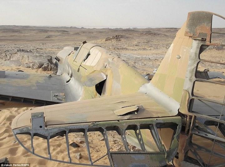 Cамолет времен Второй мировой Curtiss P-40D(E) Kittyhawk пролежал в Сахаре 70 лет (3)