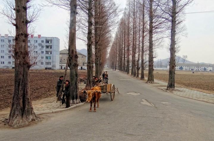 Северная Корея глазами очевидца (9)